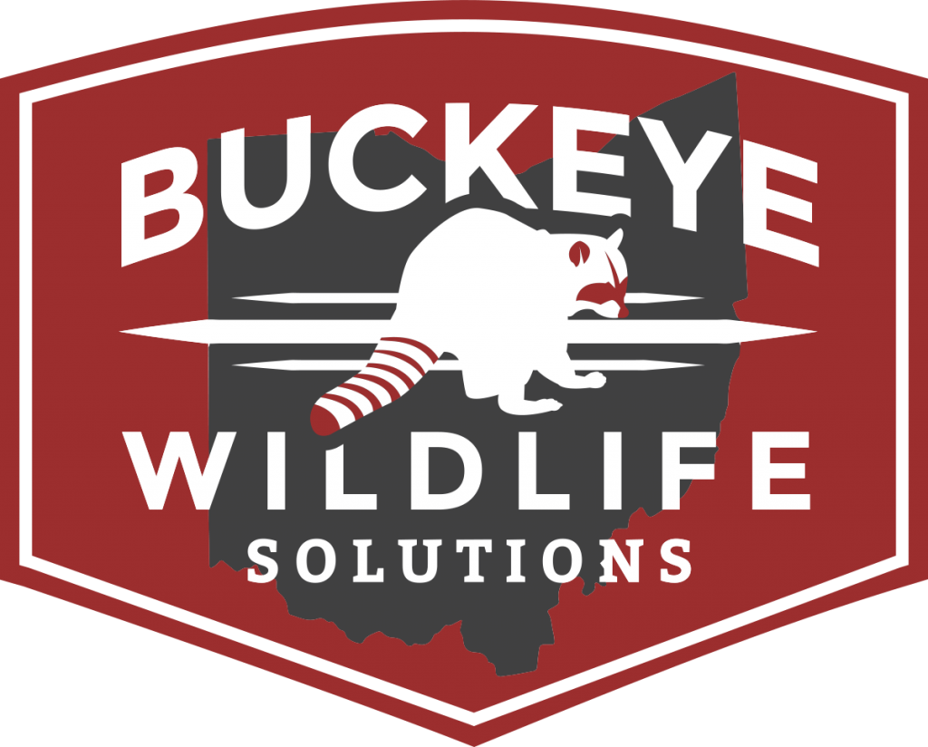 Tiffin Wildlife Animal Removal Buckeye Logo