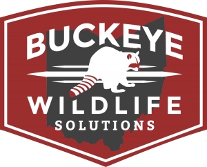 buckeye wildlife solutions badge