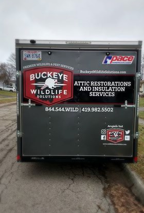 Buckeye Wildlife Solutions is the best in the business. Watch for our trucks!