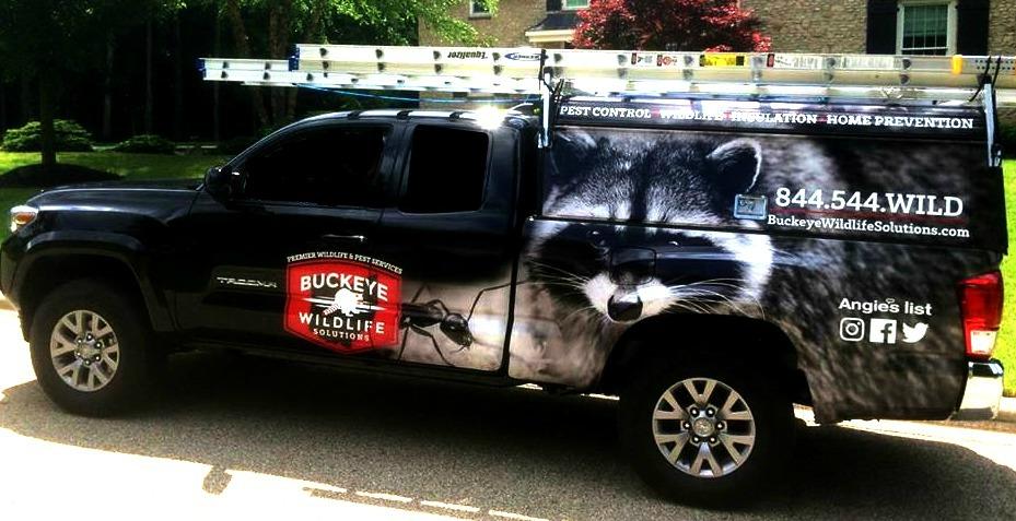 bws-truck for Buckeye Advertising Solutions (BAS)