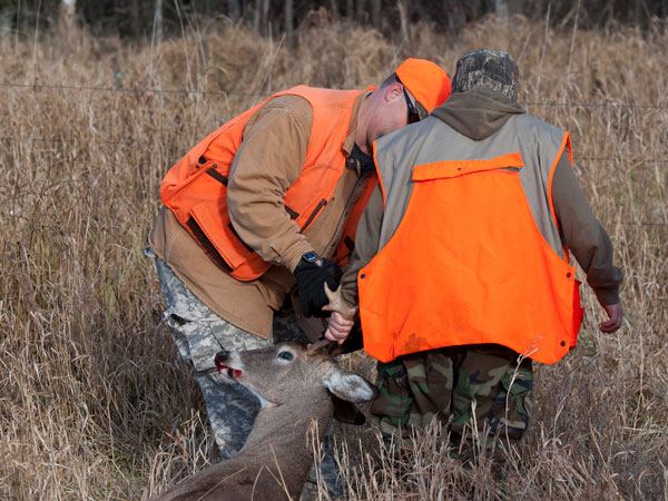 Buckeye Wildlife Solutions will remove your dead deer quickly and efficiently.