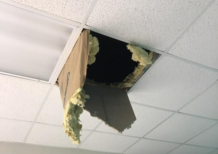 Photo: Damage to ceiling caused by a raccoon at Dayton Raccoon Removal page
