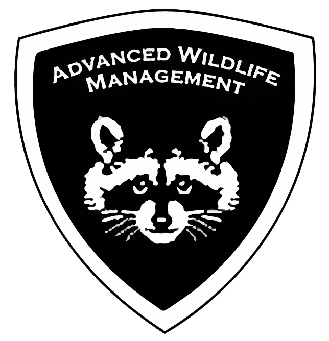 Graphic: Logo for Advanced Wildlife Management Mason Wildlife Animal Removal page