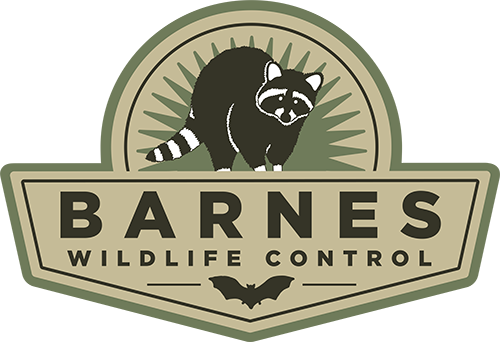 Graphic: Barnes Wildlife Control Digital Badge for Kettering Wildlife Removal